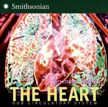 Simon, Seymour The Heart