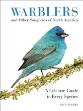 Sterry, Paul Warblers and Other Songbirds of North America