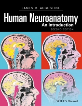 James R. Augustine Human Neuroanatomy