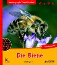 Starosta, Paul Die Biene