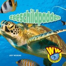 Judy  Wearing Zeeschildpadden