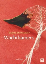 Saskia  Stehouwer Wachtkamers