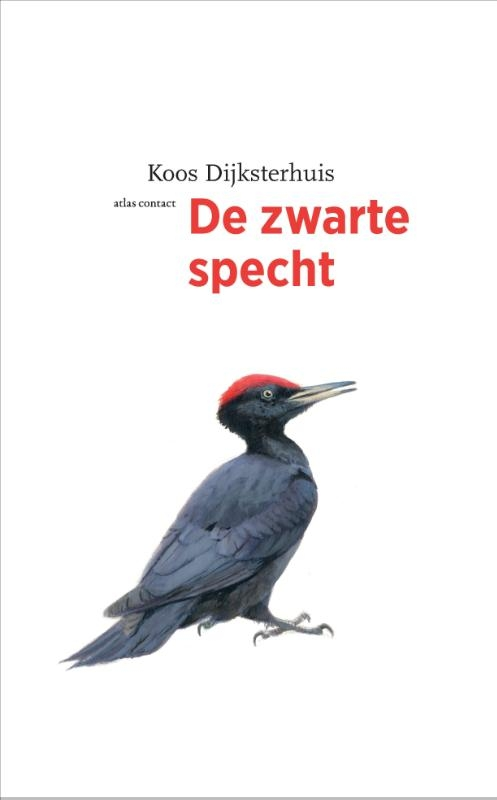 Koos Dijksterhuis,De zwarte specht