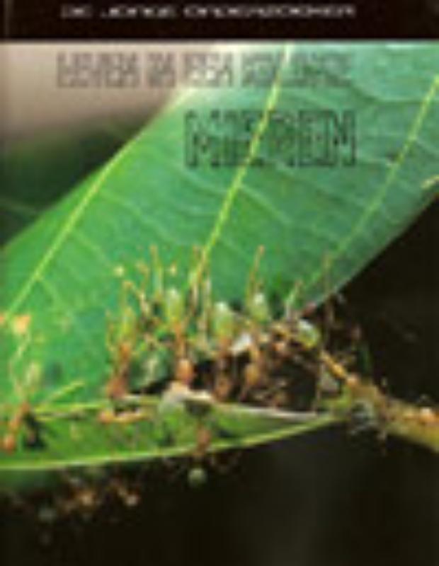 Richard Spilsbury, Louise Spilsbury,Leven in een kolonie mieren