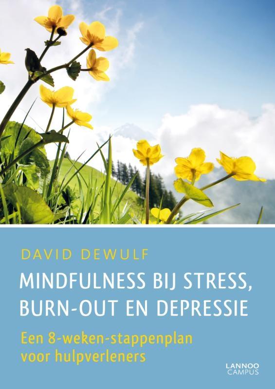 David Dewulf,Mindfulness bij stress, burn-out en depressie
