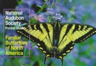 Walton, Richard K.,   Opler, Paul A. Familiar Butterflies North America