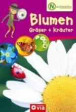 Alisch, Tatjana Naturdetektive - Blumen, Grser und Kruter