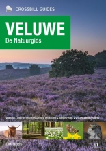 Dirk Hilbers , Veluwe