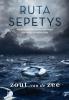 Ruta  Sepetys,Zout van de zee