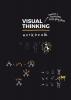 Willemien  Brand,Visual Thinking