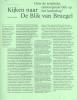 Stefan  Devoldere, Kris  Pint,Kijken naar de Blik van Bruegel