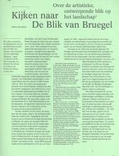 Kris Pint Stefan Devoldere, Kijken naar de Blik van Bruegel