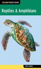 Todd Telander Reptiles & Amphibians