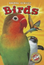 Schuetz, Kari Birds