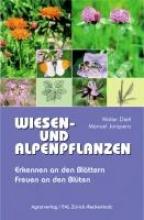 Dietl, Walter Wiesen- und Alpenpflanzen