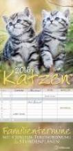 Katzen Familientermine 2016 Familienplaner