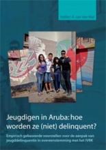 Hellen van der Wal , Jeugdigen in Aruba: hoe worden ze (niet) delinquent?