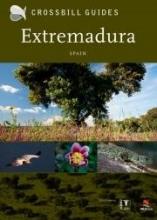 Dirk  Hilbers Crossbill Guide Extremadura Spain - natuur reisgids Spanje
