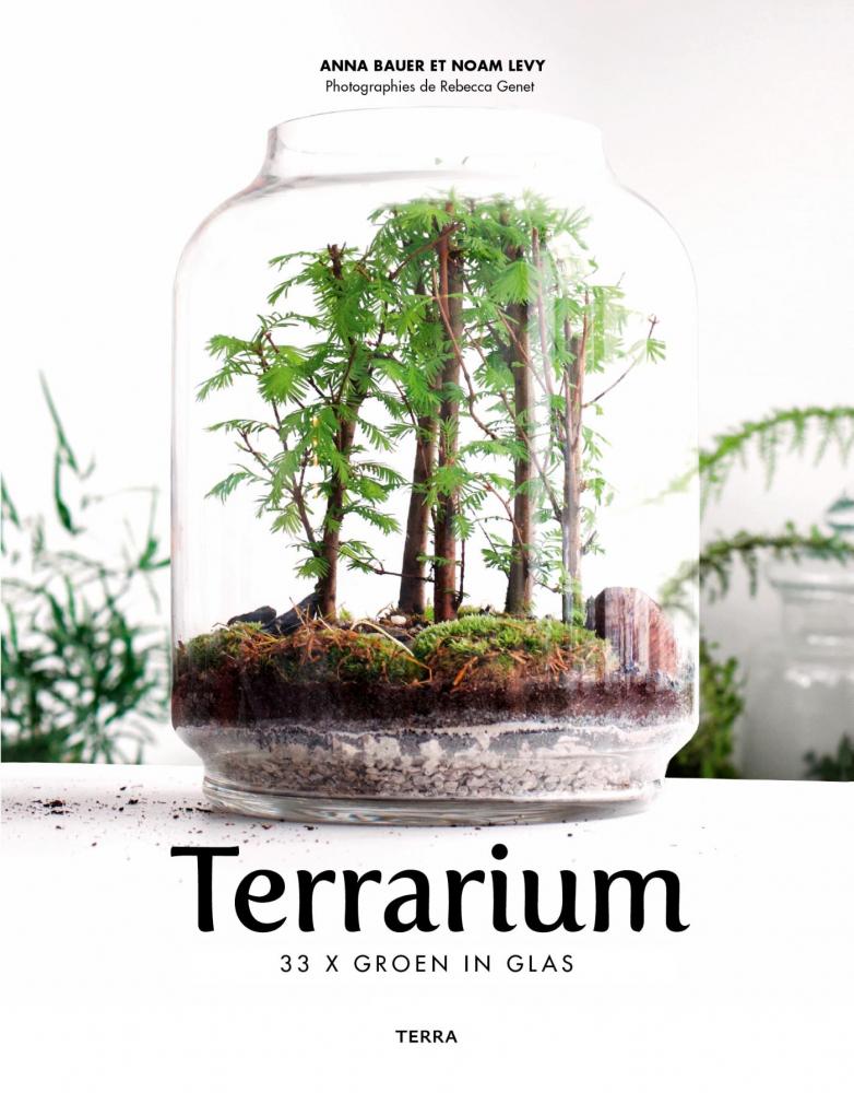 Noam Levy, Anna Bauer,Terrarium