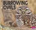 Hill, Melissa,Burrowing Owls