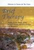 Myriam Le Fevere de Ten Hove,Brief Therapy