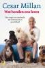 <b>Cesar  Millan</b>,Wat honden ons leren