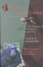Craig Stanford Chimpanzee and Red Colobus