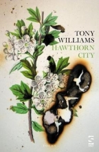 Tony Williams Hawthorn City