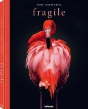 Krebs, Pedro Jarque Fragile