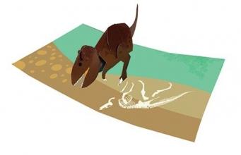 2totango Tyrannosaurus
