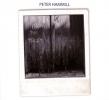 peter Hammill, Cd hammill from the trees