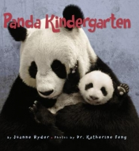 Ryder, Joanne Panda Kindergarten