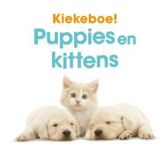 Kiekeboe! Puppies en kittens