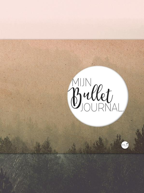 ,Mijn bullet journal