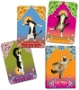 Tillotson, Rick,Cat Yoga Postcards