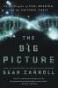 Sean Carroll,The Big Picture
