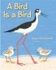 Rockwell, Lizzy,A Bird Is a Bird
