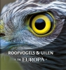 <b>Jaap  Schelvis, Arno ten Hoeve</b>,Roofvogels & uilen in Europa