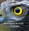 Jaap  Schelvis, Arno ten Hoeve,Roofvogels en uilen in Europa
