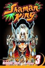 Takei, Hiroyuki Shaman King 3
