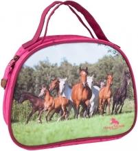 Horses dreams beauty-case