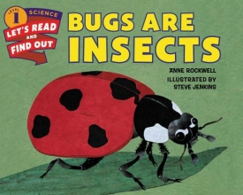Rockwell, Anne F. Bugs Are Insects
