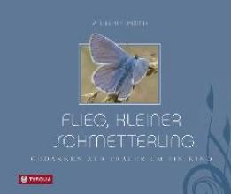 Hillebrand, Petra Flieg, kleiner Schmetterling