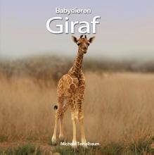 Michael  Teitelbaum Giraf