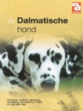 , De Dalmatische hond