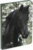 ,<b>Schoolagenda 2018-2019 amazone paarden</b>