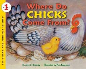 Sklansky, Amy E. Where Do Chicks Come From?