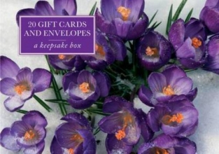 Crocus 20 Gift Cards and Envelopes