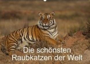 Vollborn, Marion Die schnsten Raubkatzen der Welt (Wandkalender 2016 DIN A2 quer)