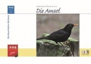 Bosch, Stefan Die Amsel